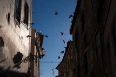 Lisbon, October 30th, 2013